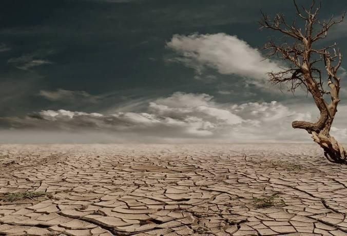 january-desert-prompt
